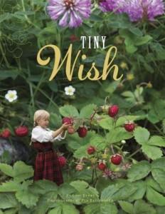 TinyWish